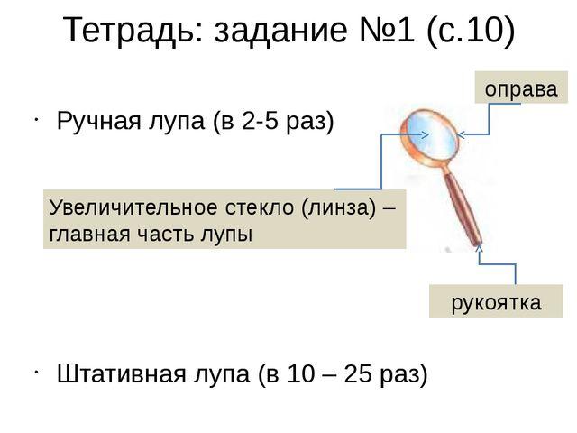 Тетрадь: задание №1 (с.10) Ручная лупа (в 2-5 раз) Штативная лупа (в 10 – 25...