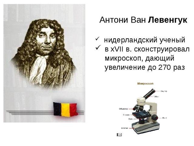 Антони Ван Левенгук нидерландский ученый в хVII в. сконструировал микроскоп,...