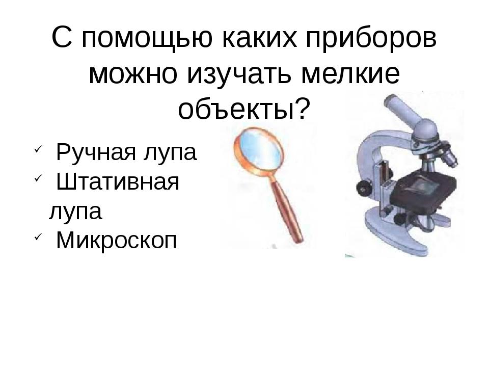 С помощью каких приборов можно изучать мелкие объекты? Ручная лупа Штативная...