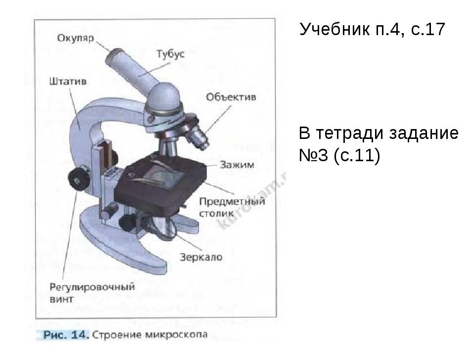Учебник п.4, с.17 В тетради задание №3 (с.11)