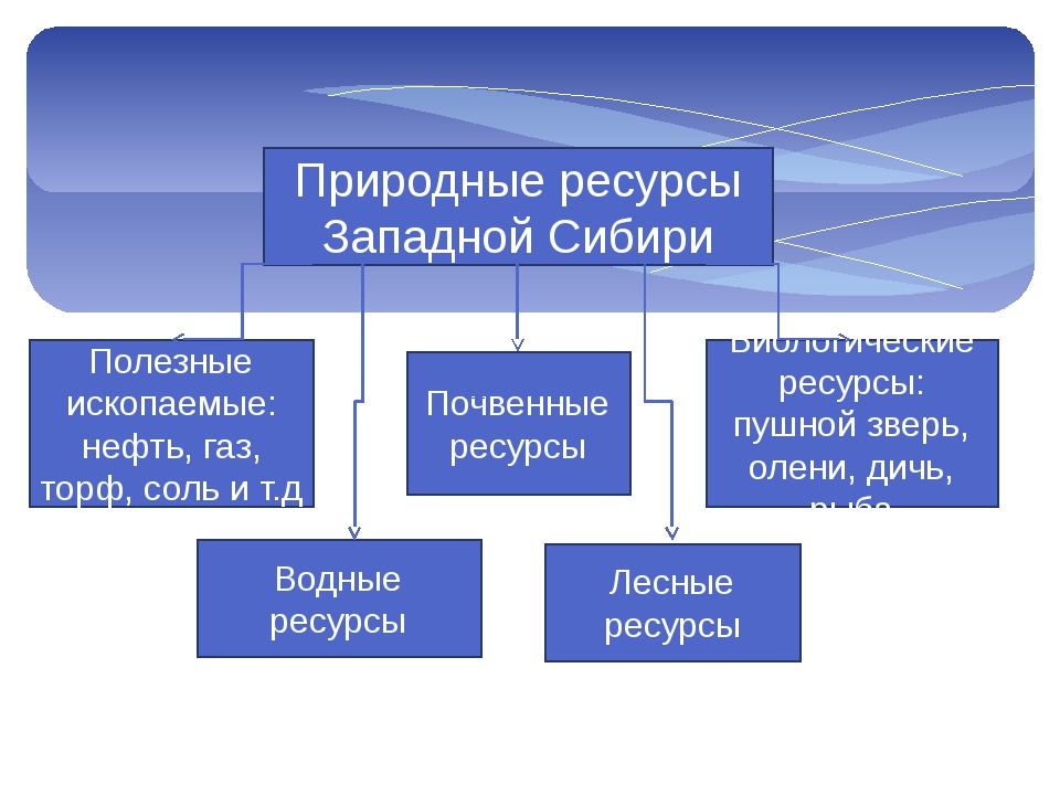 Природные ресурсы Западной Сибири Полезные ископаемые: нефть, газ, торф, соль...
