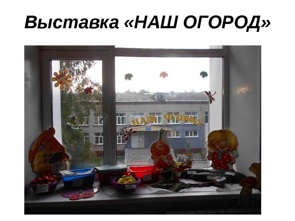 Выставка «НАШ ОГОРОД»