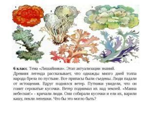 6 класс. Тема «Лишайники». Этап актуализации знаний. Древняя легенда рассказы