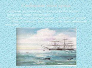Сообщение темы урока Сегодня мы продолжаем читать произведения Л.Н. Толстого.