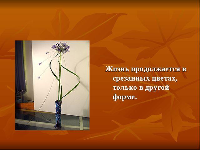 Жизнь продолжается в срезанных цветах, только в другой форме.