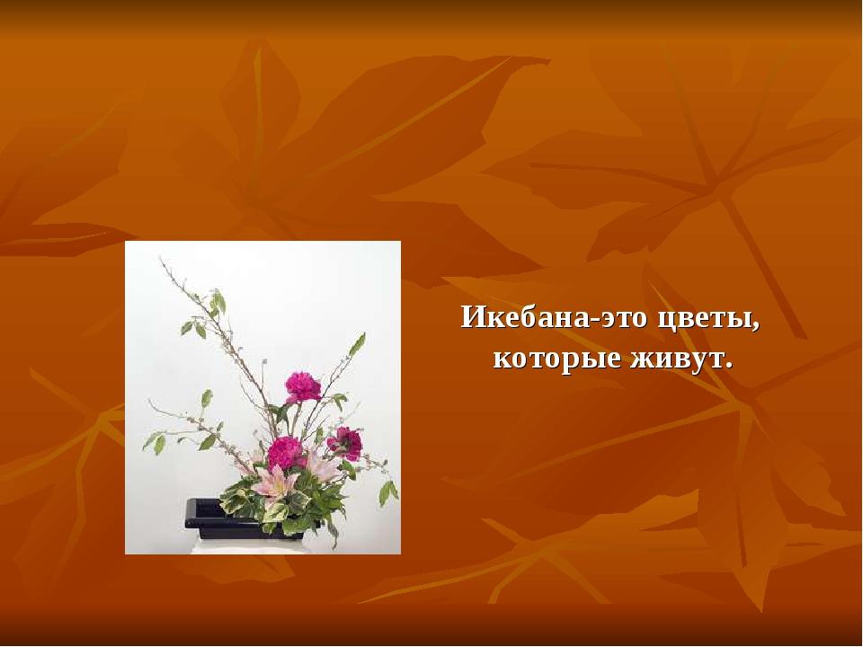 Икебана-это цветы, которые живут.