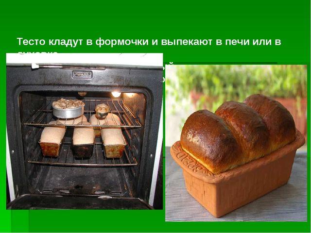 Тесто кладут в формочки и выпекают в печи или в духовке. И получается вкусны...