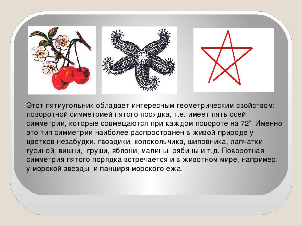 Этот пятиугольник обладает интересным геометрическим свойством: поворотной с...
