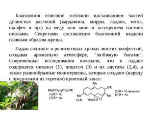 Благовония египтяне готовили настаиванием частей душистых растений (кардамона