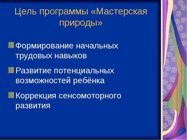 Цель программы «Мастерская природы» Формирование начальных трудовых навыков Р...