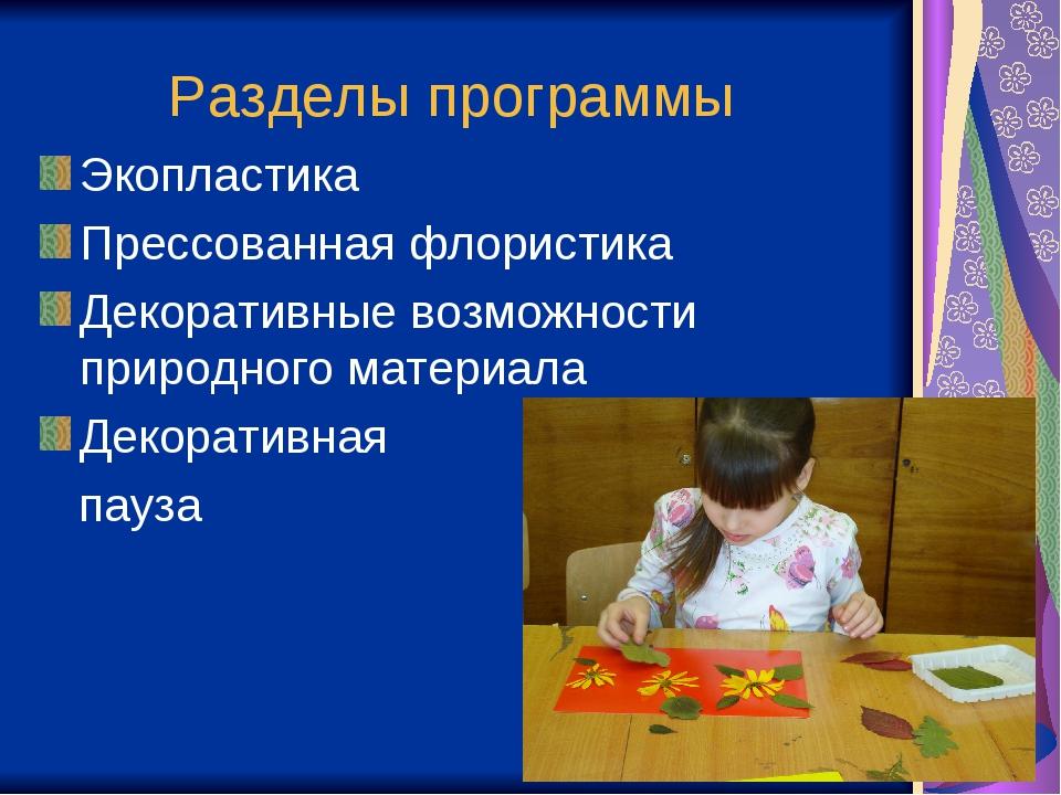 Разделы программы Экопластика Прессованная флористика Декоративные возможност...