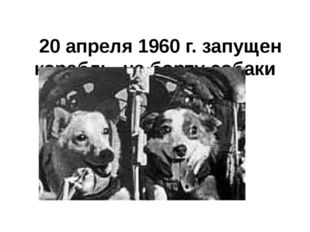 20 апреля 1960 г.запущен корабль, на борту собаки Белка и Стрелка.