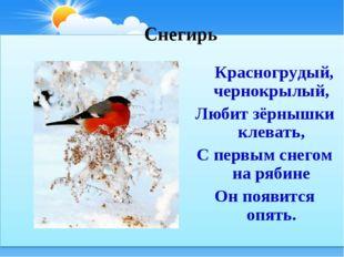 Снегирь Красногрудый, чернокрылый, Любит зёрнышки клевать, С первым снегом н