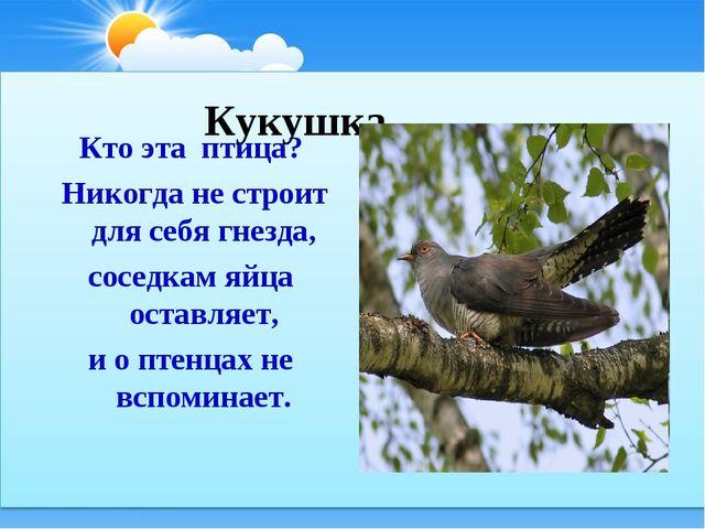 Кукушка Кто эта птица? Никогда не строит для себя гнезда, соседкам яйца оста...