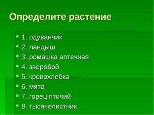 Определите растение 1. одуванчик 2. ландыш 3. ромашка аптечная 4. зверобой 5.