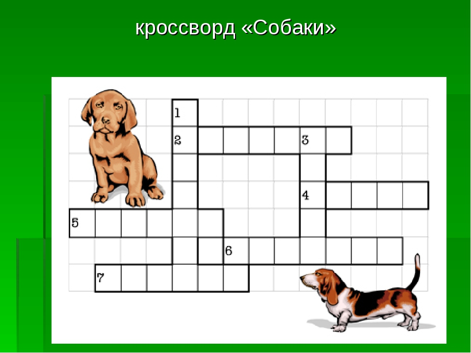кроссворд «Собаки»