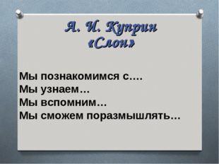 А. И. Куприн «Слон» Мы познакомимся с…. Мы узнаем… Мы вспомним… Мы сможем пор