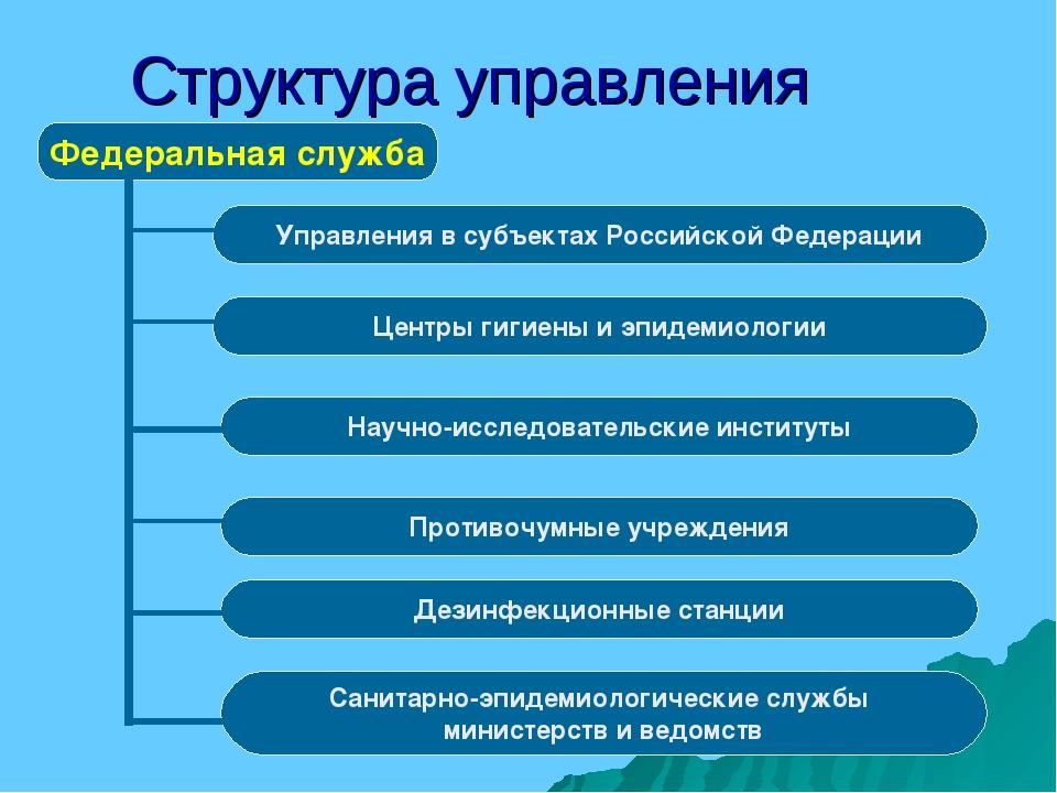 Структура управления Федеральная служба Управления в субъектах Российской Фед...
