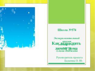 Школа №574 Экспериментальный проект ученика 3 «Б» класса Алиева Ниджата Как в