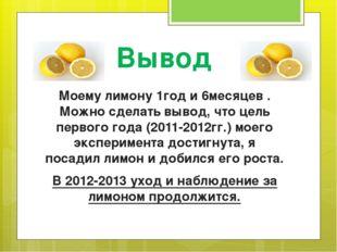 Вывод Моему лимону 1год и 6месяцев . Можно сделать вывод, что цель первого го