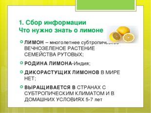 1. Сбор информации Что нужно знать о лимоне ЛИМОН – многолетнее субтропическо
