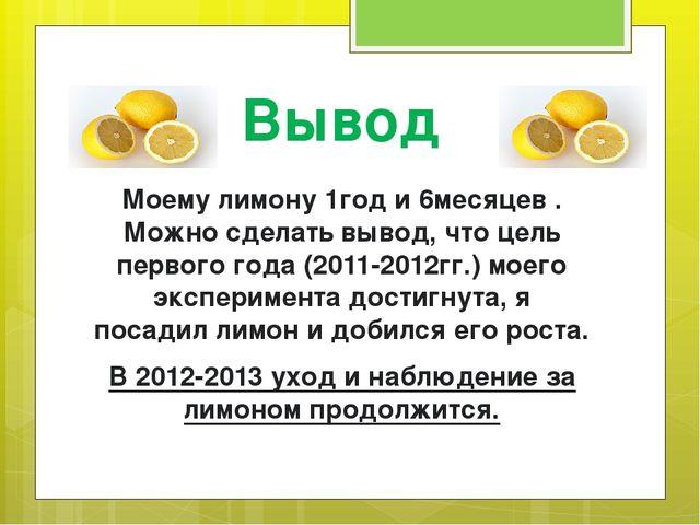 Вывод Моему лимону 1год и 6месяцев . Можно сделать вывод, что цель первого го...
