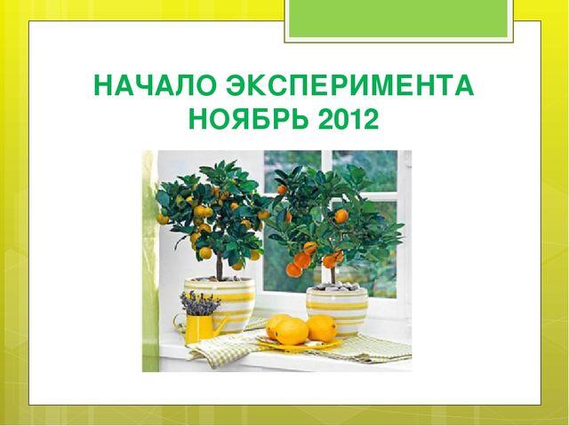 НАЧАЛО ЭКСПЕРИМЕНТА НОЯБРЬ 2012