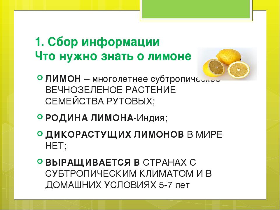 1. Сбор информации Что нужно знать о лимоне ЛИМОН – многолетнее субтропическо...