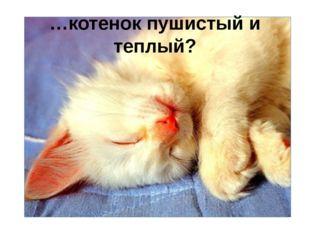 …котенок пушистый и теплый?