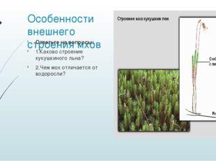 Особенности внешнего строения мхов Ответьте на вопросы: 1.Каково строение кук