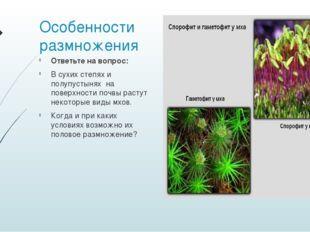 Особенности размножения Ответьте на вопрос: В сухих степях и полупустынях на