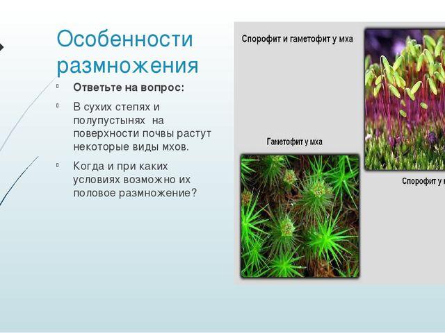 Особенности размножения Ответьте на вопрос: В сухих степях и полупустынях на...