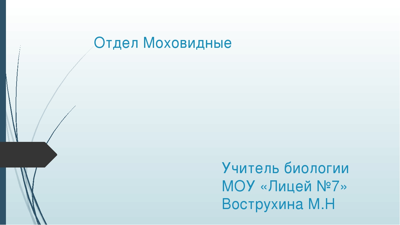 Отдел Моховидные Учитель биологии МОУ «Лицей №7» Вострухина М.Н