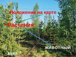 Положение на карте Растения животный мир