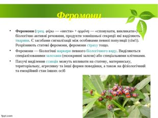 Феромони Феромони (грец. φέρω — «нести» + ορμόνη — «спонукати, викликати»)—