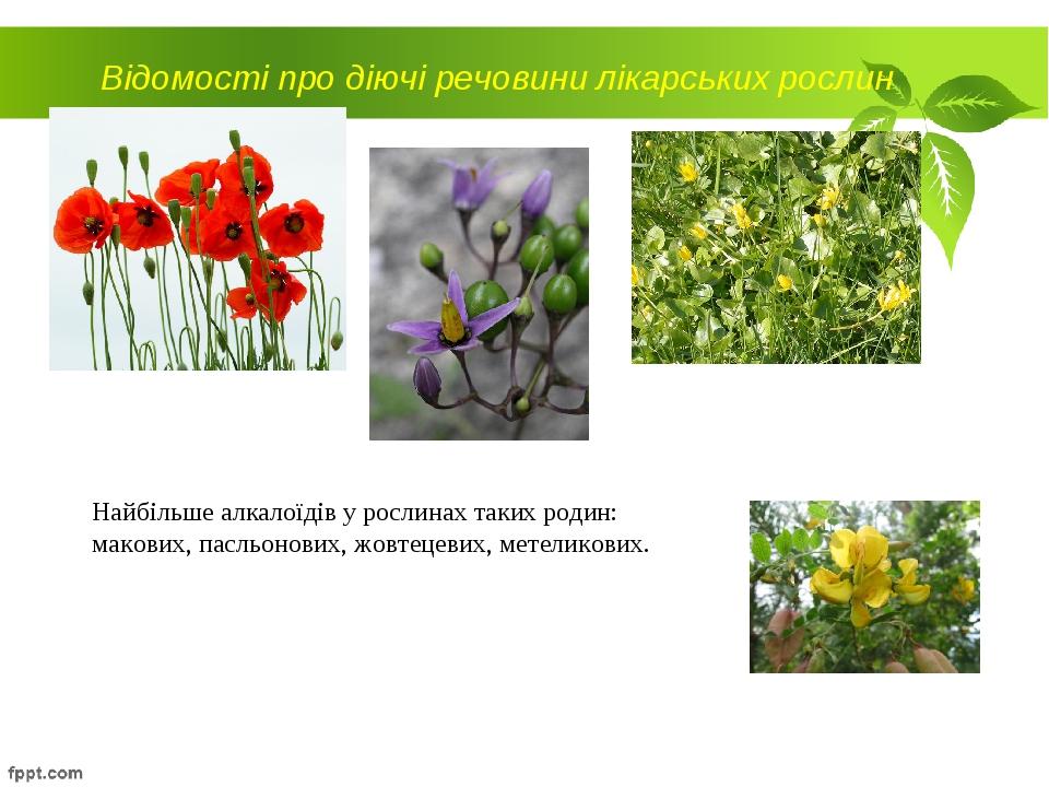 Відомості про діючі речовини лікарських рослин Найбільше алкалоїдів у рослина...