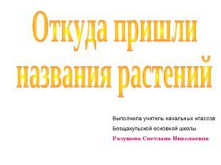 Выполнила учитель начальных классов Бозщакульской основной школы Разумова Све
