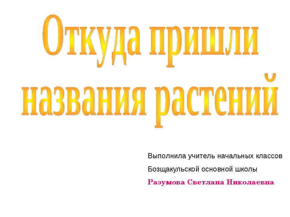 Выполнила учитель начальных классов Бозщакульской основной школы Разумова Све...