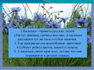1.Васильки – примета русских полей. 2.Растут пшеница, гречиха или овес, и вас