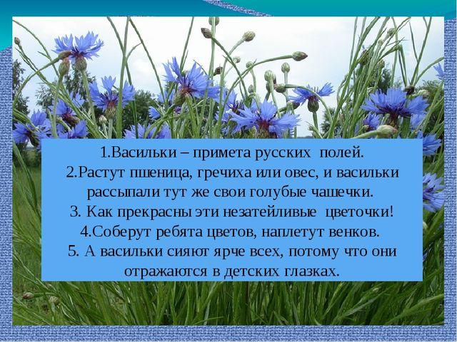 1.Васильки – примета русских полей. 2.Растут пшеница, гречиха или овес, и вас...