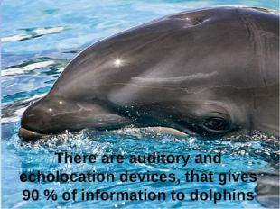 There are auditory and echolocation devices, that gives 90 % of information