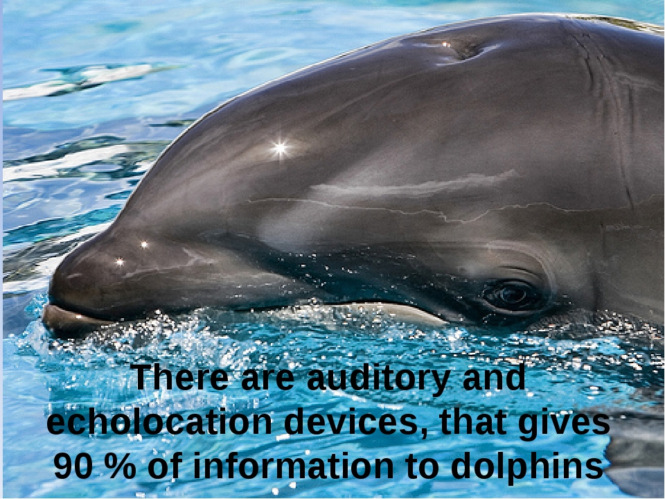 There are auditory and echolocation devices, that gives 90 % of information...