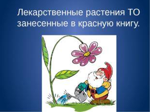 Лекарственные растения ТО занесенные в красную книгу.