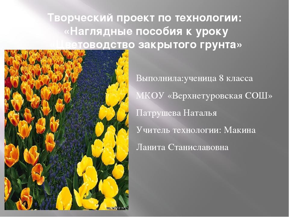 Творческий проект по технологии: «Наглядные пособия к уроку «Цветоводство зак...