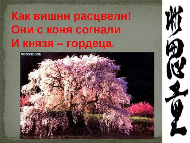 Как вишни расцвели! Они с коня согнали И князя – гордеца.