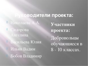 Руководители проекта: Николаева А.А. Сидорова Ангелина Васильева Юлия Ильин