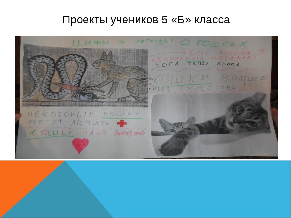 Проекты учеников 5 «Б» класса