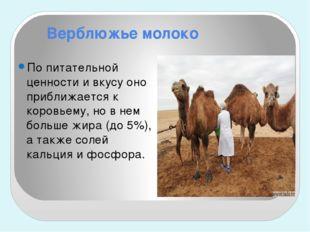 Верблюжье молоко По питательной ценности и вкусу оно приближается к коровьему