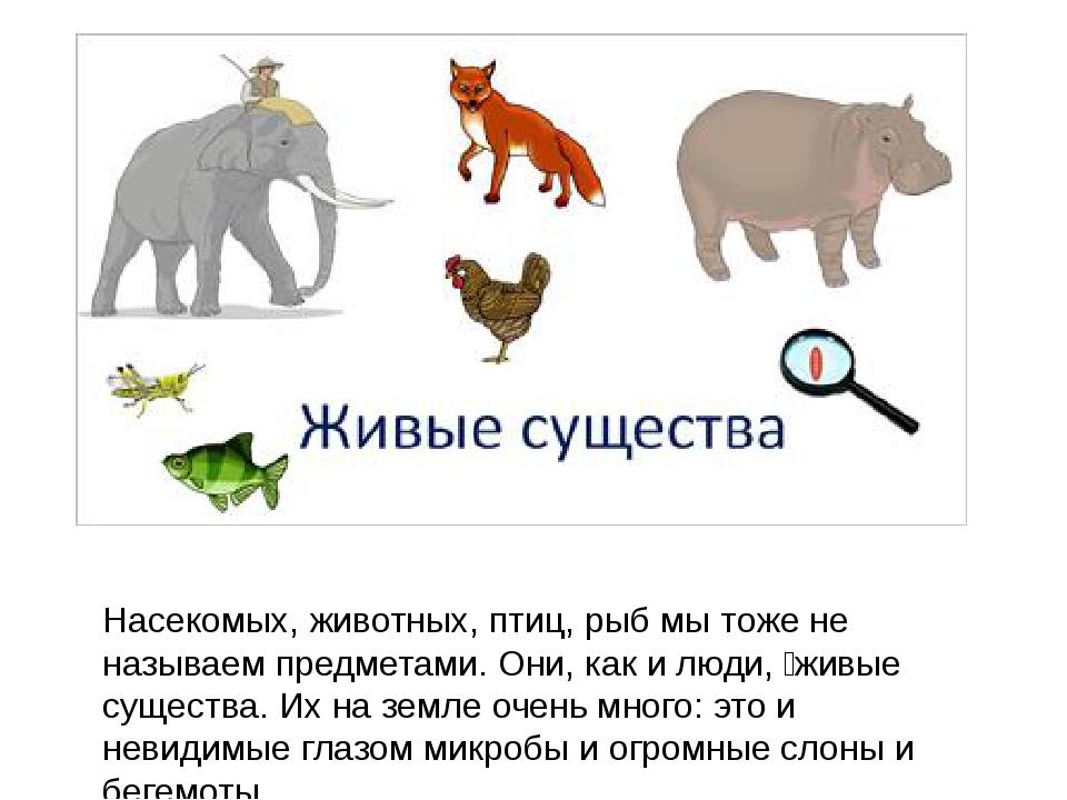 юбилей картинки все живые существа затем