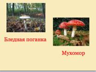 hello_html_m1f1b2d5c.png